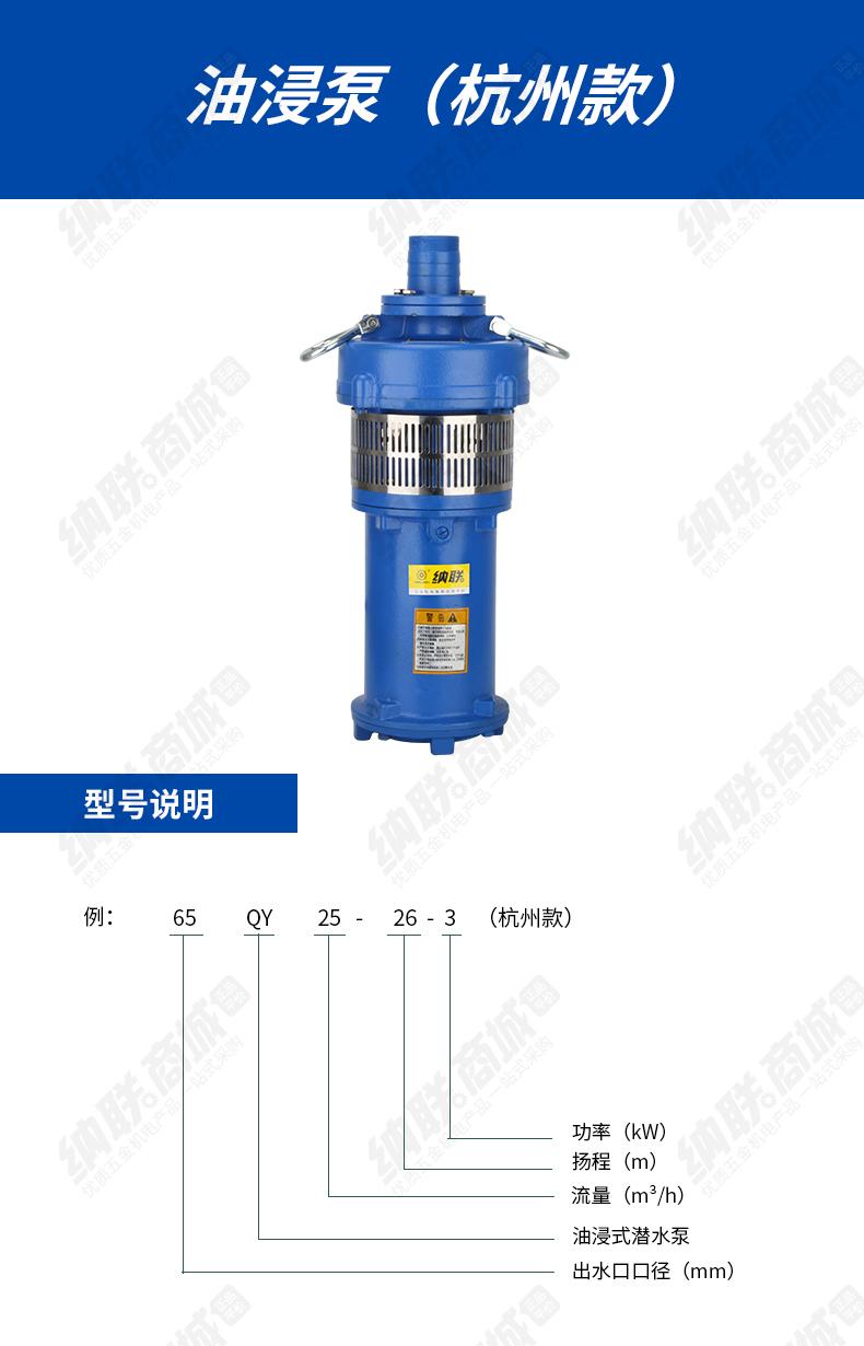 进越油浸泵-(2)_01.jpg