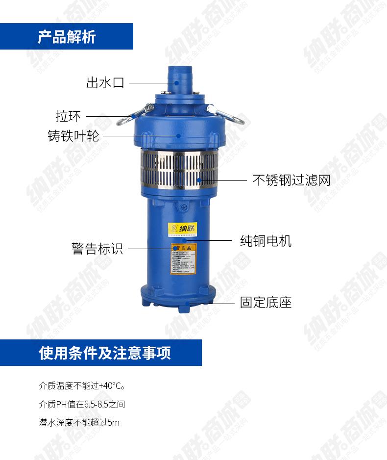 进越油浸泵-(2)_03.jpg