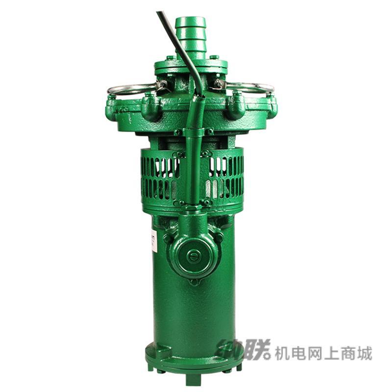 纳联机电 油浸泵-65QY20-30-3