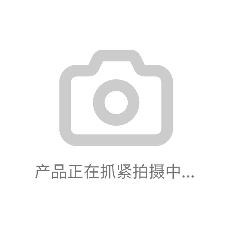 纳联机电 铝合金绞肉机-10#-2标准款