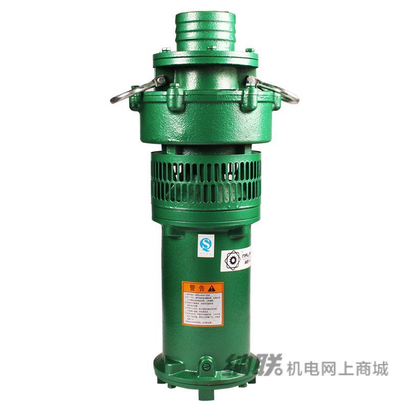 纳联机电 油浸泵-100QY65-14-4