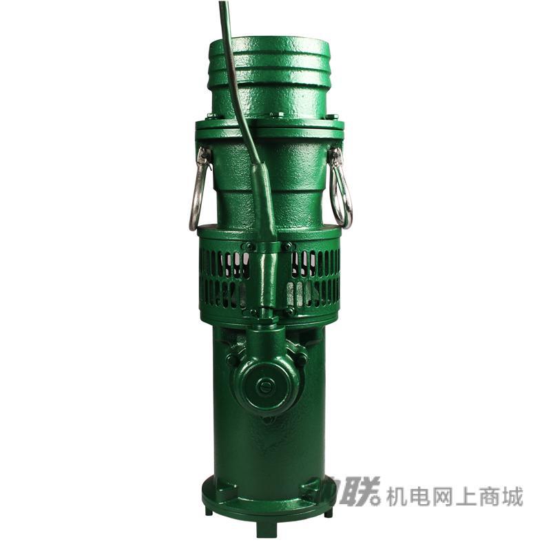 纳联机电 油浸泵-150QY160-5-3